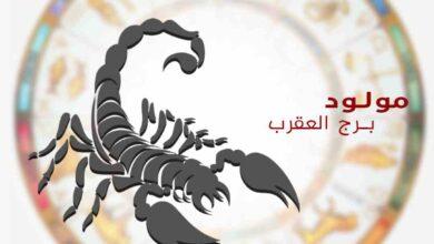 Photo of توقعات برجك العقرب اليوم الأثنين 11/1/2021 على جميع الأصعدة